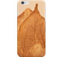 Lavatera Seed Macro  iPhone Case/Skin