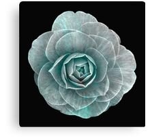 Flower 10 Canvas Print