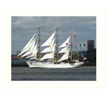 Tall Ships Race Art Print