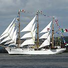 Tall Ships Race by Mike Paget