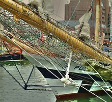 Tall Ships' Race: Liverpool 2008 -2 by PhotogeniquE IPA