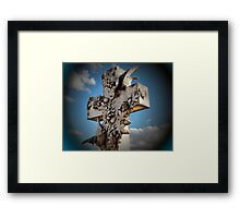 Love Divine Framed Print