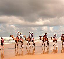 Camel tour by jongsoolee