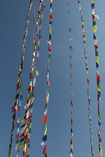 Buddhist Prayer Flags by Matthew Duke