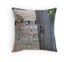 eloquent age Throw Pillow