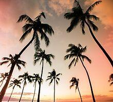 Maui Paradise by Shari Mattox