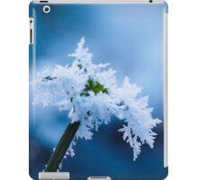 Ice Flower  iPad Case/Skin