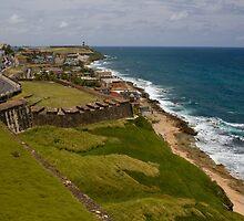 Puerto Rico Coastline by David Chappell