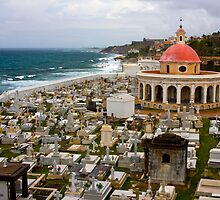 Cemetery near El Morro by David Chappell
