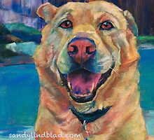 Chelsea the yellow lab dog by lindbladstudios