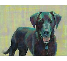 Black Lab painting created by Lindblad Studios Photographic Print