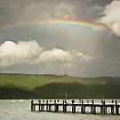 Rainbow by Tim Wootton