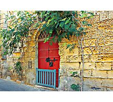 Red Door Blue Gate Photographic Print