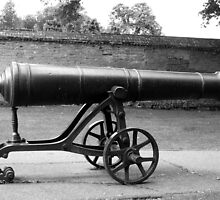 Russian Cannon by Susan E. King
