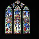 Stained Glass Window 1 by Susan E. King