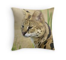 Serval, 2 Throw Pillow