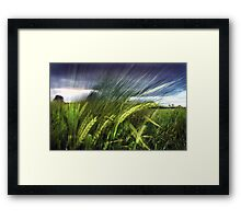 field experiments Framed Print