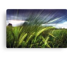 field experiments Canvas Print