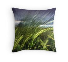 field experiments Throw Pillow