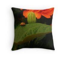 Rambl'n Ladybug  Throw Pillow