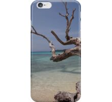 South Pacific Dreaming iPhone Case/Skin