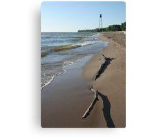 Driftwood on Winnipeg Beach Canvas Print