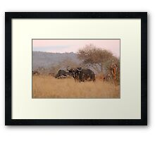 I am watching you! Framed Print