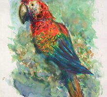 Scarlet Macaw - Watercolor by DaCapoWalworth