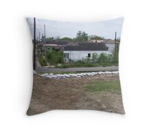 Framed in sand Throw Pillow