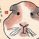 Guinea Piggy by dosankodebbie