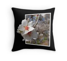 Spring in the Valley Throw Pillow
