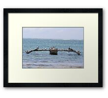A flotilla of sea birds  Framed Print