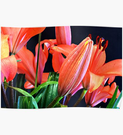 """Day lilies"" Poster"