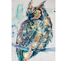 Great horned owl in gold Photographic Print