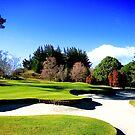 Wairakei International Golf Course Taupo by Stephen Johns