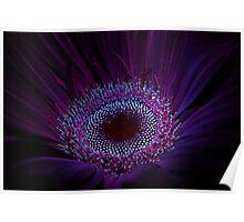 UV Induced Bio-luminescence 7 Poster