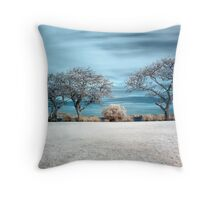 Asleep In Perfection Throw Pillow