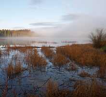 Early morning at Lac Le Jeune by Robert Elliott