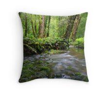 gondwana land Throw Pillow