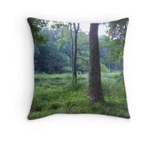 in the morning when i rise... Throw Pillow