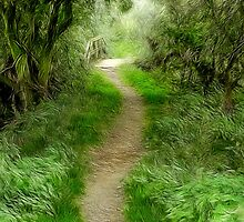 The path to Willow Bridge by John Edwards
