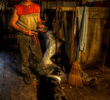 The Shearer. by Peter Hodgson