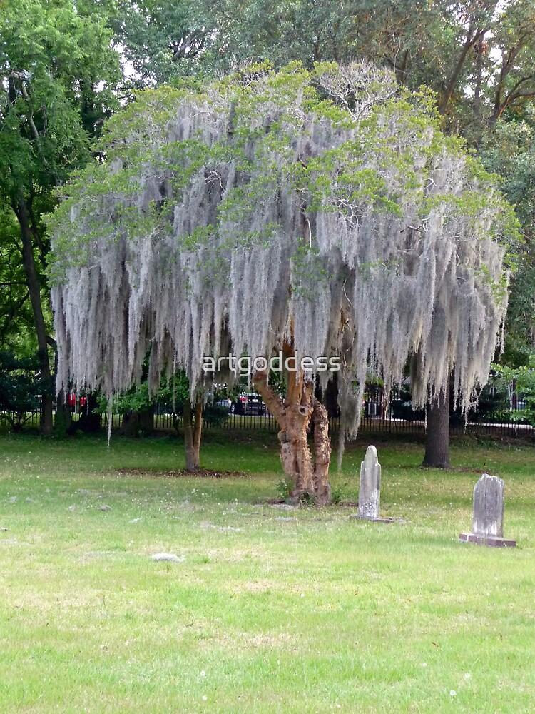 Savannah Graveyard by artgoddess