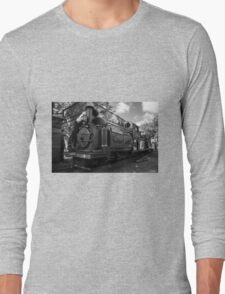 Palmerston takes a drink  Long Sleeve T-Shirt