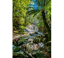 Horseshoe Falls - In Flood Photographic Print