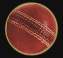 cricket ball by dennis william gaylor