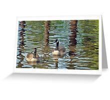Canadian Geese on Crystal Springs Pond Greeting Card