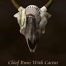 Chief Runs With Catcus by Abeque  Wikimac