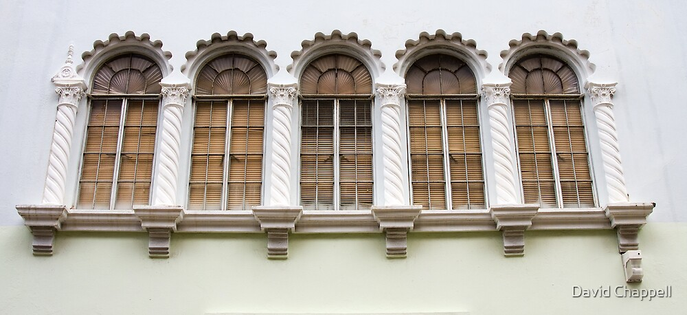 Windows by David Chappell