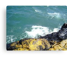 short drop Canvas Print